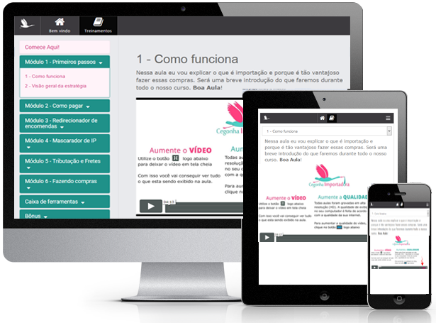 curso-cegonha-importadora-download